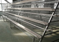 Chiny Hot Galvanized 4 Layers 5 Rooms 160 Chicken Layer Cage For Laying Hens firma